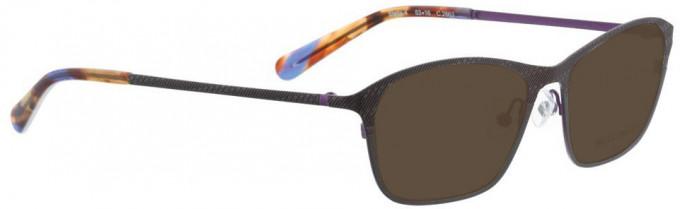 Bellinger STELLA-4-2863 Sunglasses in Brown