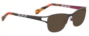 Bellinger ZEUS-2869 Sunglasses in Brown/Purple