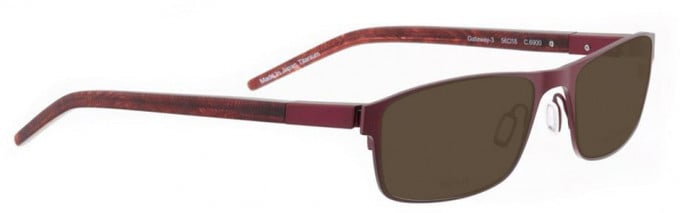 Bellinger GATEWAY-3-6900 Sunglasses in Aubergine