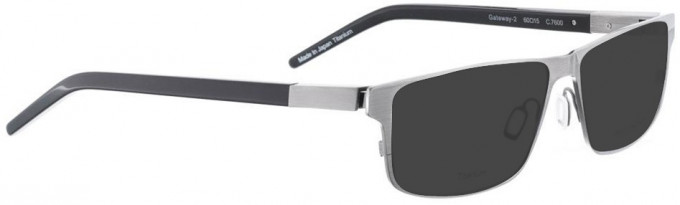 Bellinger GATEWAY-2-7600 Sunglasses in Grey