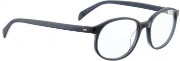 Entourage of 7 BOBBY Glasses in Dark Blue