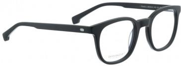 Entourage of 7 HANK-L Glasses in Matte Black