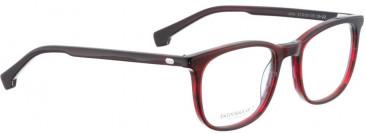 Entourage of 7 JALIE Glasses in Red