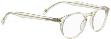 Entourage of 7 KENT Glasses in Brown
