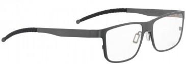 Entourage of 7 DELMAR Glasses in Grey