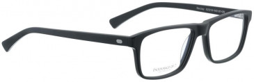 Entourage of 7 Plastic Ready-Made Reading Glasses