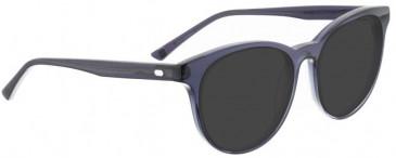 Entourage of 7 GREIR Sunglasses in Grey Crystal
