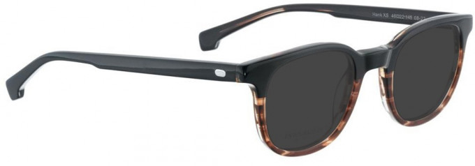 Entourage of 7 HANK-XS Sunglasses in Brown