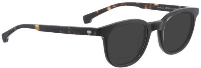 Entourage of 7 HANK-XS Sunglasses in Dark Brown