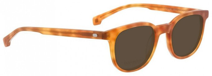Entourage of 7 HANK-XS Sunglasses in Light Brown