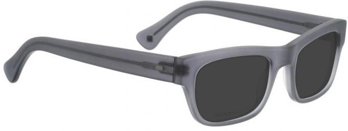Entourage of 7 ROY Sunglasses in Grey Crystal