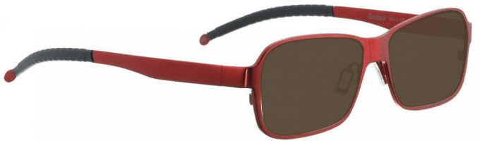 Entourage of 7 GARDENA Sunglasses in Shiny Red