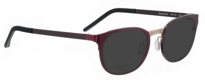Entourage of 7 BAKERSFIELD Sunglasses in Purple