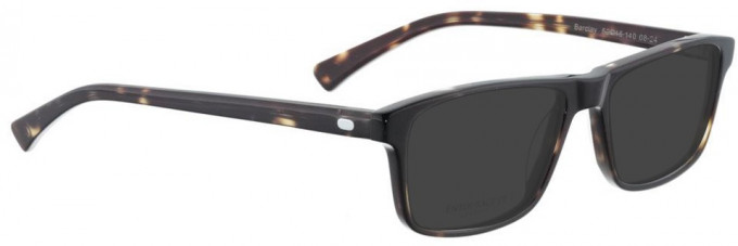 Entourage of 7 BARCLAY Sunglasses in Brown