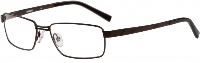 Cat CTO-E04 Glasses in Brown