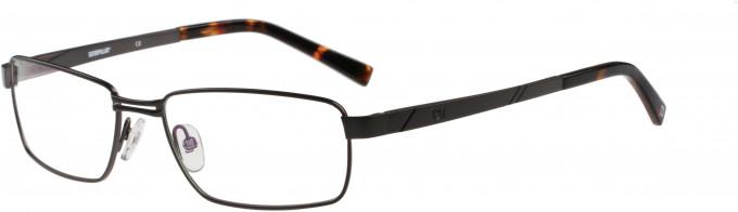 Cat CTO-E04 Glasses in Titanium