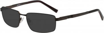 Cat CTO-E07 Sunglasses in Brown