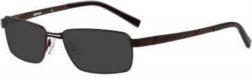 Cat CTO-E04 Sunglasses in Brown