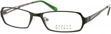 Andrew Actman KISKADEE Glasses in Olive