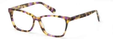 DiMarco DM134 Glasses in Turquoise