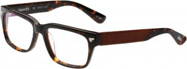 Superdry SDO-OFFICER Glasses in Havana Tortoiseshell/Durango Tan
