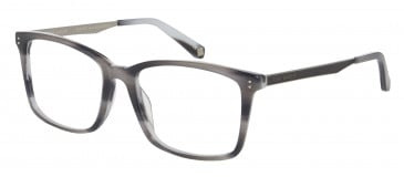 Ted Baker Glasses TB8153 in Grey Horn