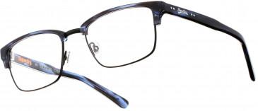 Superdry SDO-BUDDY Glasses in Gloss Tortoiseshell/Gold