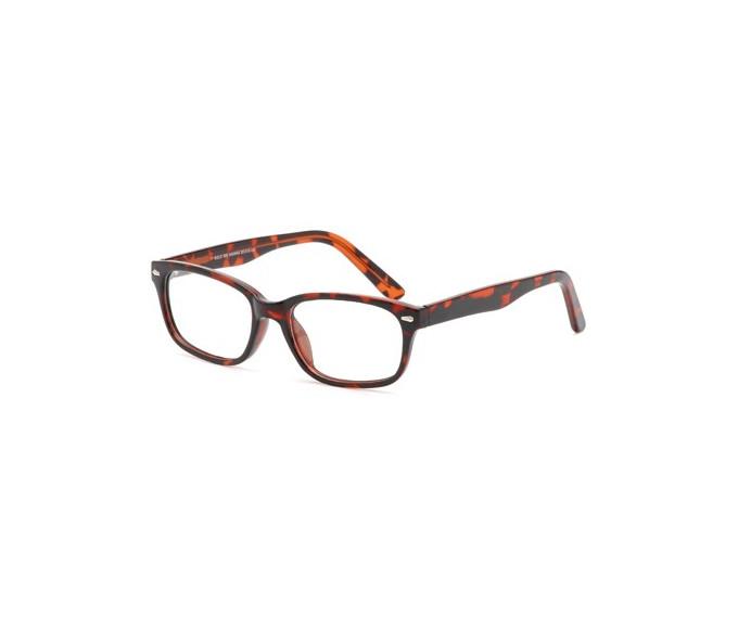 SFE Plastic Prescription Glasses in havana