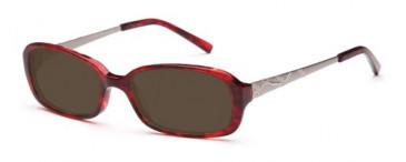 SFE 8911 sunglasses in wine