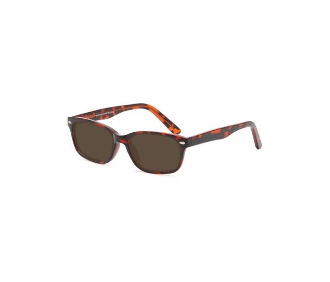 SFE-0170 sunglasses in havana