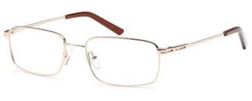 SFE-9560 glasses in Gold