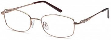 SFE-9618 glasses in Brown
