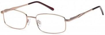 SFE-9619 glasses in Brown