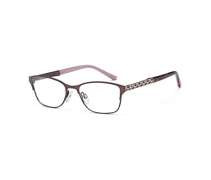 SFE-9500 glasses in Bronze