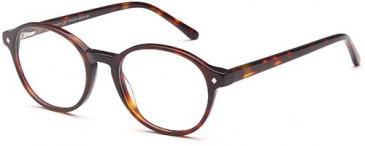 SFE-9507 glasses in Havana