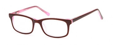 SFE Plastic Ready-made Reading Glasses
