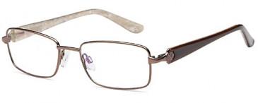 SFE-9562 glasses in Brown