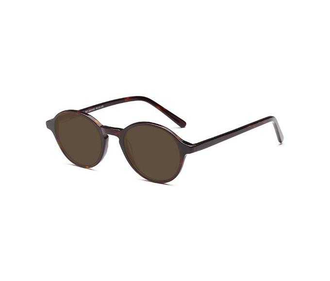 SFE-9498 sunglasses in Havana