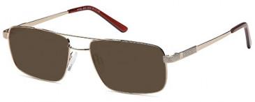 SFE-9559 sunglasses in Gold