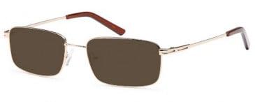 SFE-9560 sunglasses in Gold