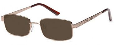 SFE-9616 sunglasses in Brown
