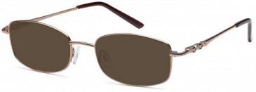 SFE-9618 sunglasses in Brown