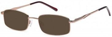SFE-9619 sunglasses in Brown