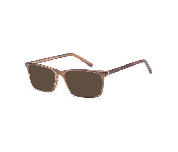SFE-9547 sunglasses in Matt Brown
