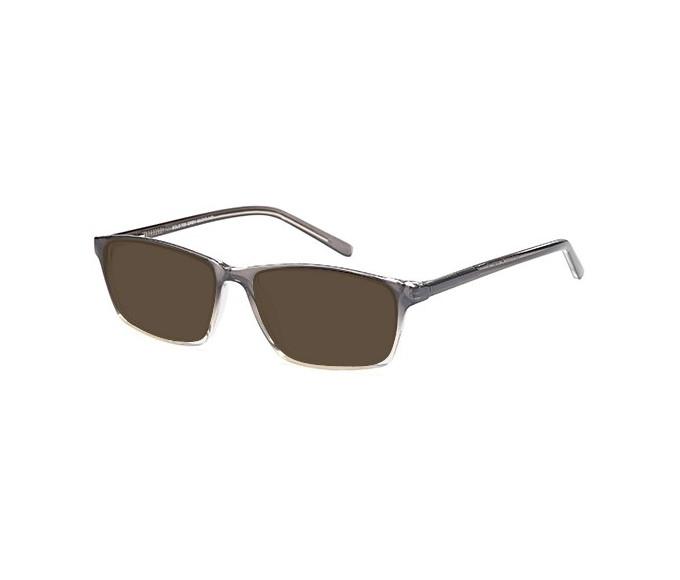 SFE-9579 sunglasses in Grey
