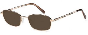 SFE-9648 sunglasses in Gold