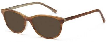 SFE-9539 sunglasses in Brown