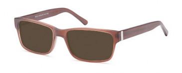 SFE-9558 sunglasses in Chocolate