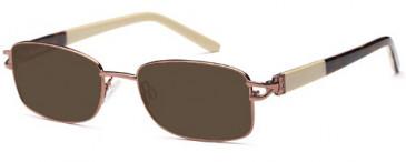 SFE-9568 sunglasses in Brown