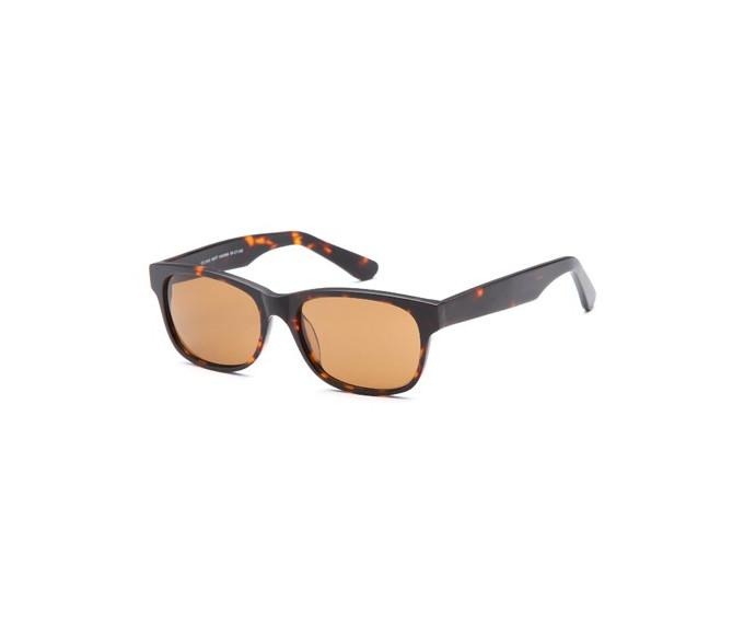 SFE-9669 Sunglasses in Matt Havana